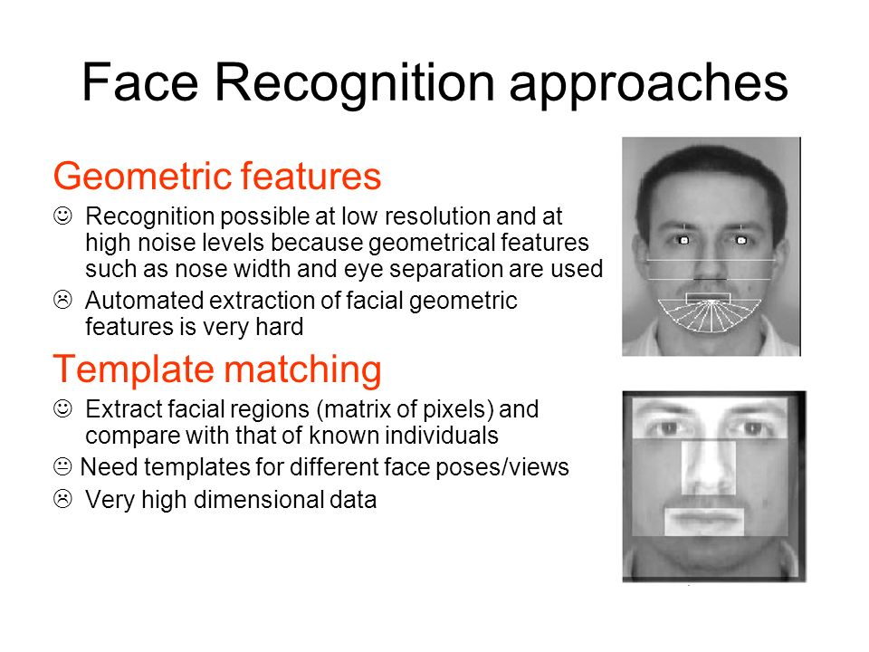 Face Recognition approaches