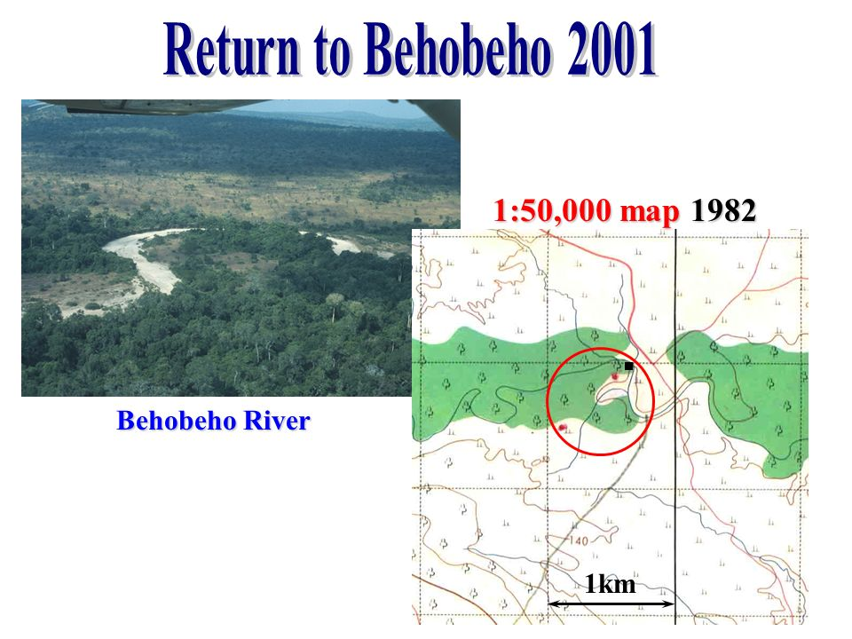 Return to Behobeho 2001 1:50,000 map 1982 Behobeho River 1km
