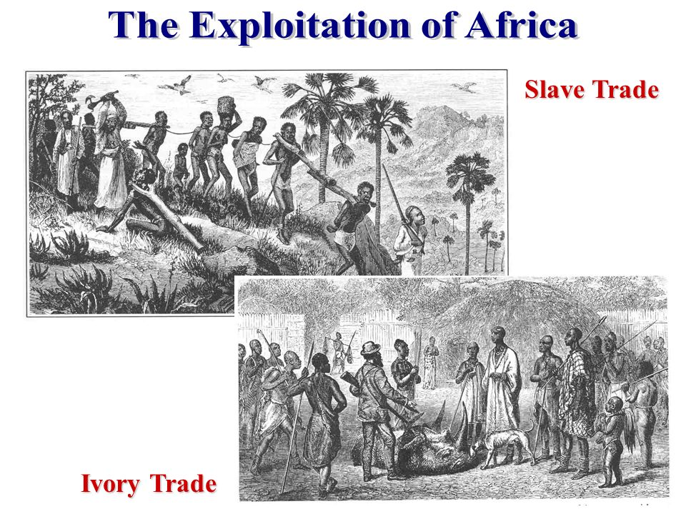 The Exploitation of Africa