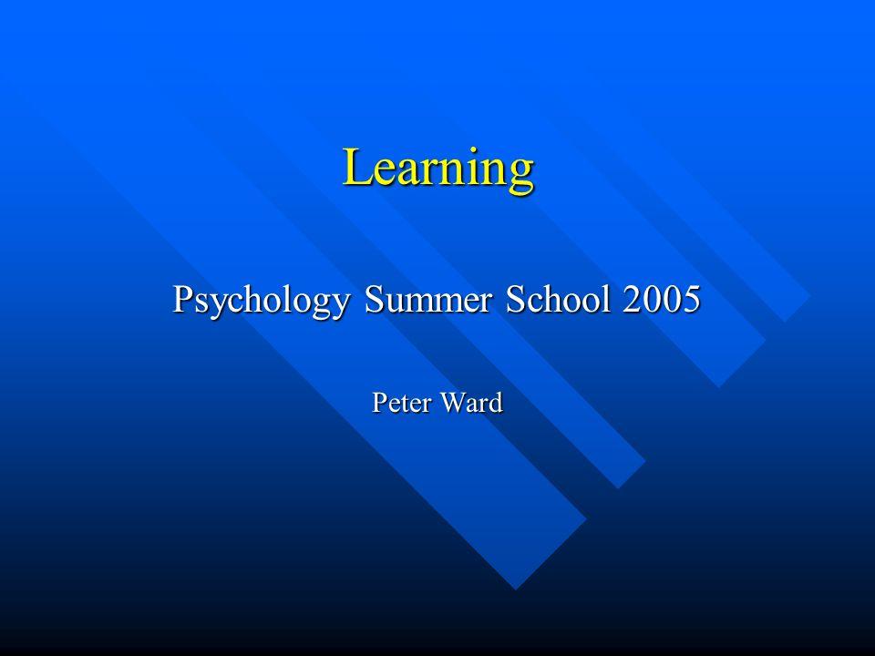 Psychology Summer School 2005 Peter Ward