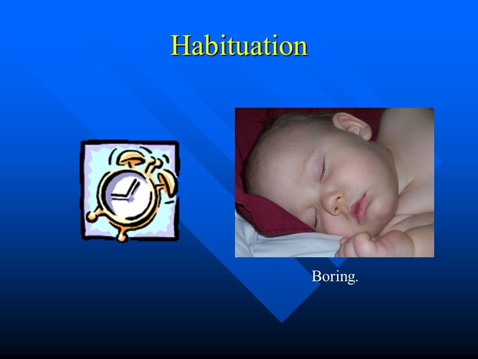 Habituation Boring.