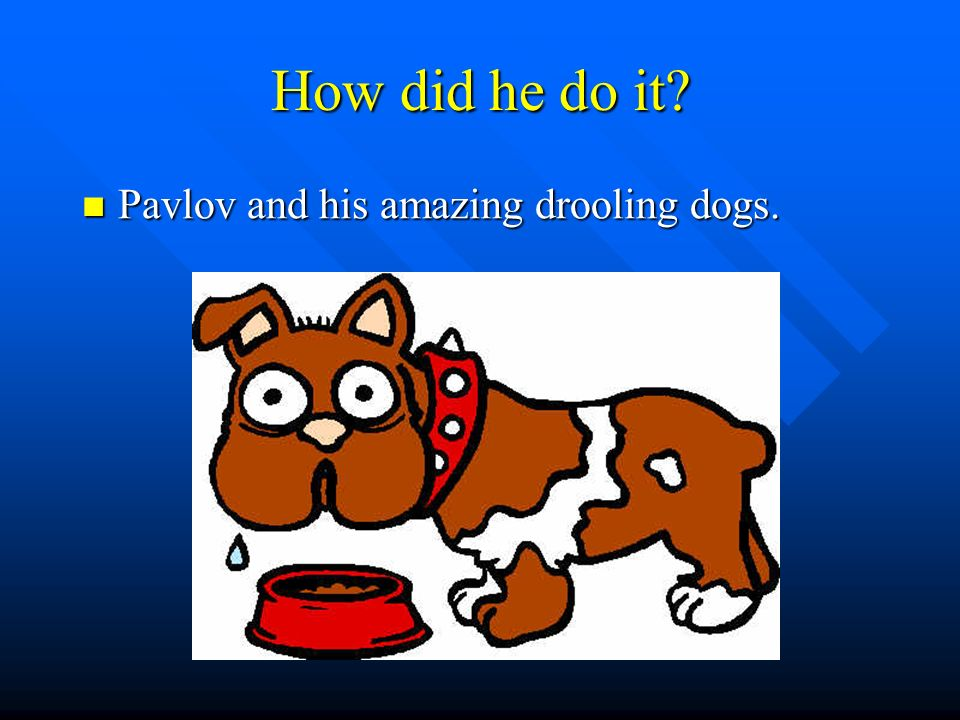 How did he do it Pavlov and his amazing drooling dogs.