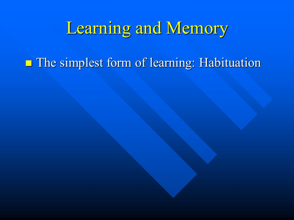 Learning and Memory The simplest form of learning: Habituation