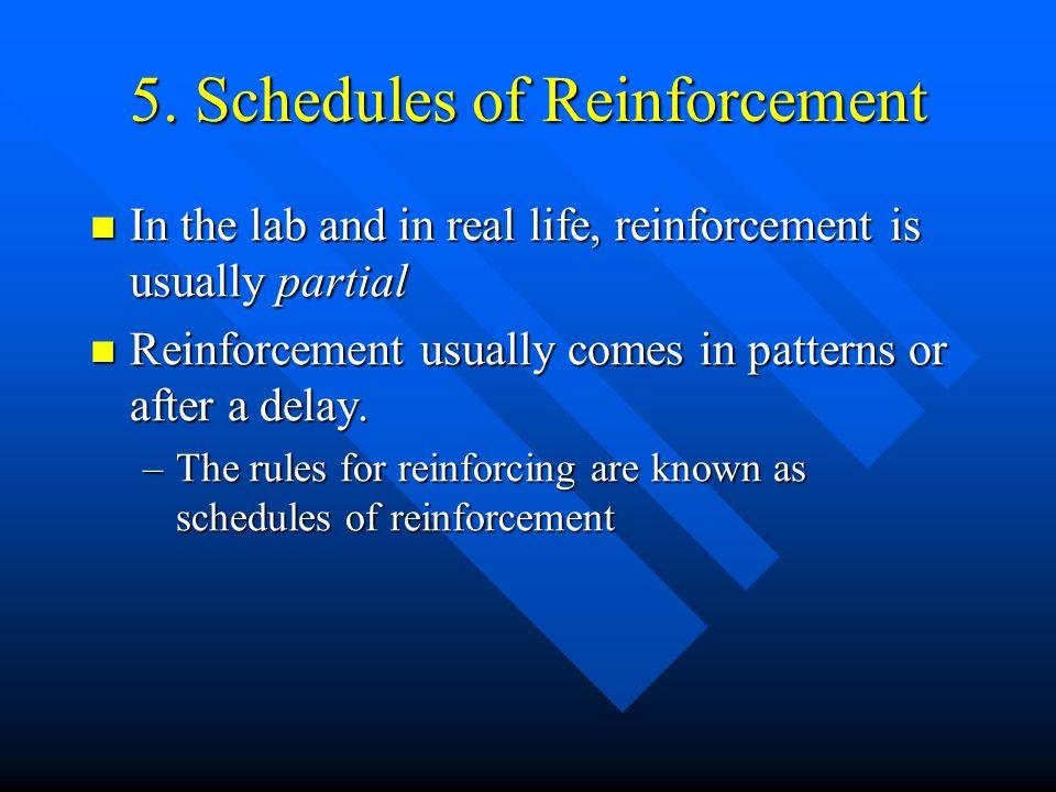 5. Schedules of Reinforcement