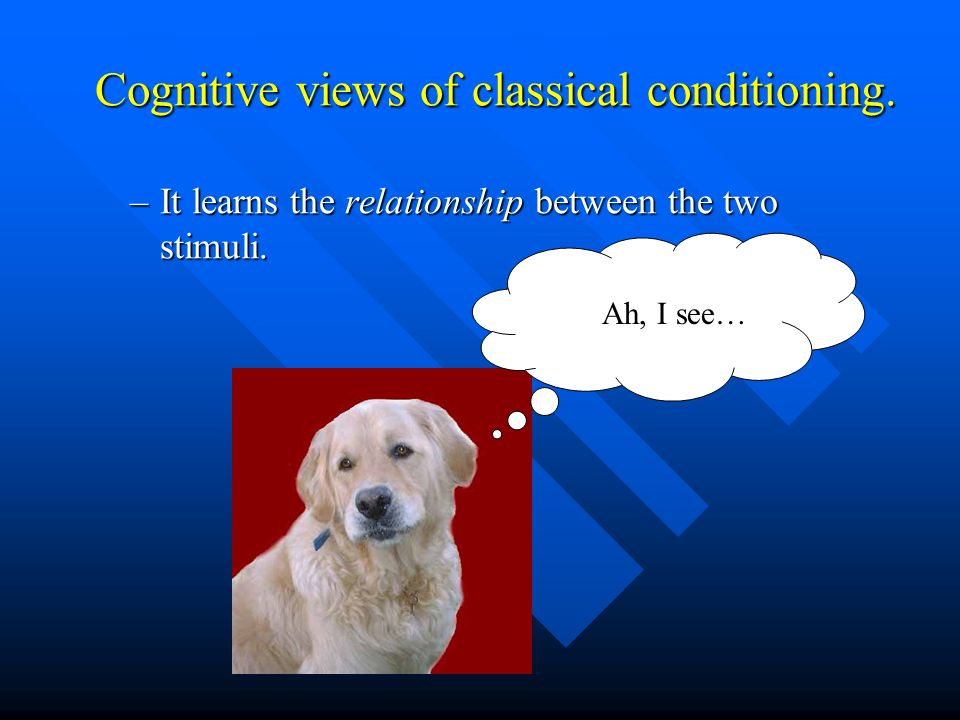 Cognitive views of classical conditioning.