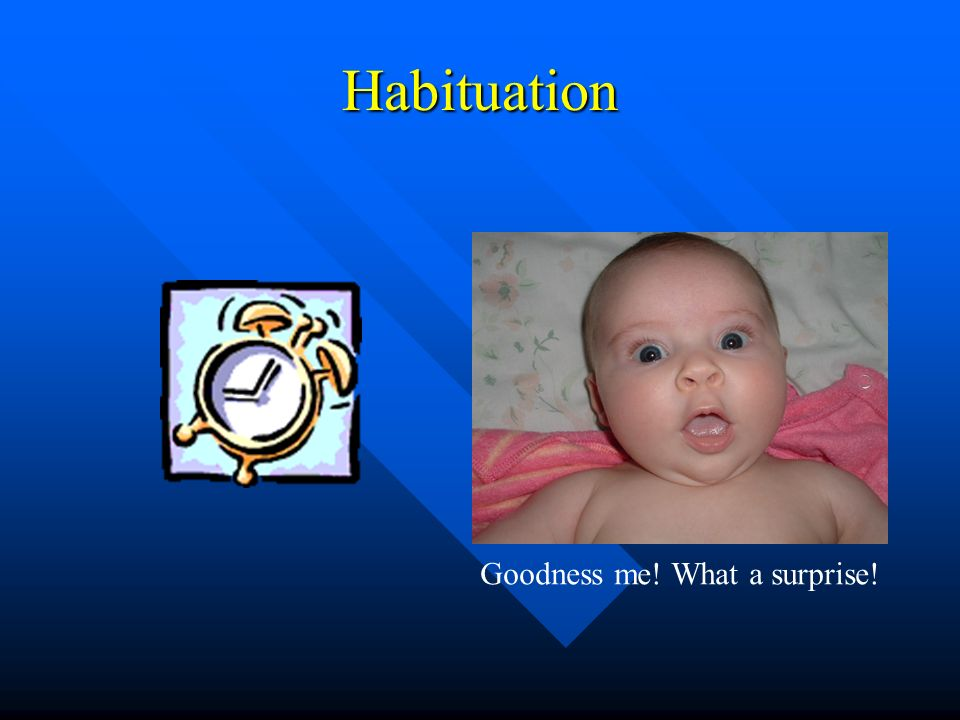 Habituation Goodness me! What a surprise!
