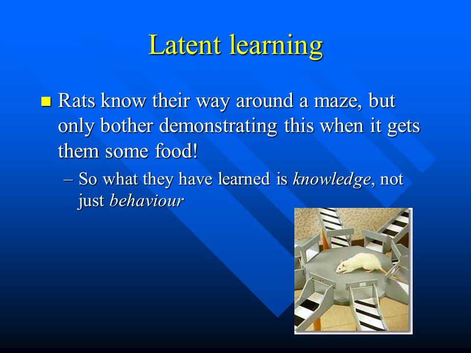 Latent learningRats know their way around a maze, but only bother demonstrating this when it gets them some food!