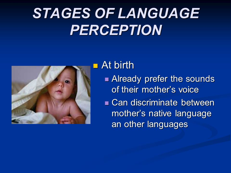 STAGES OF LANGUAGE PERCEPTION