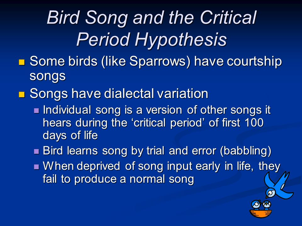 Bird Song and the Critical Period Hypothesis
