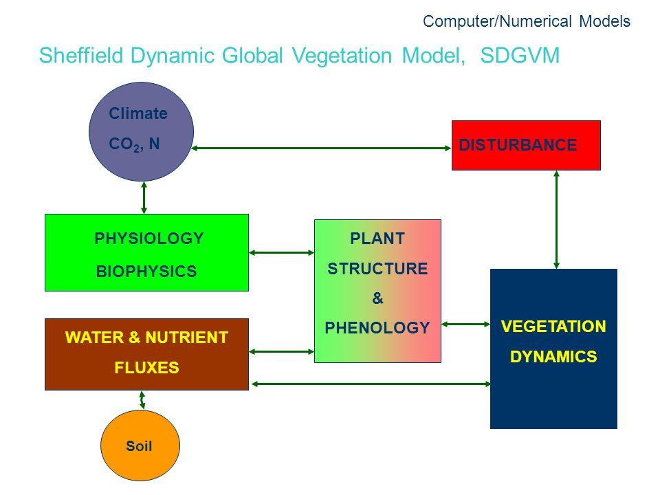 Sheffield Dynamic Global Vegetation Model, SDGVM