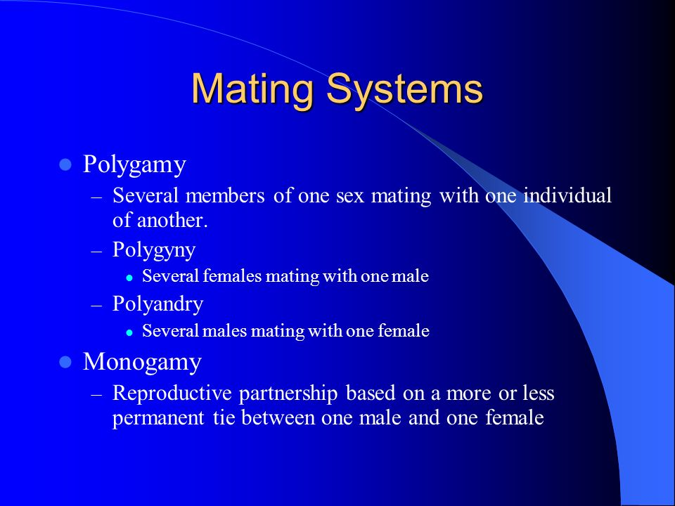 Mating Systems Polygamy Monogamy