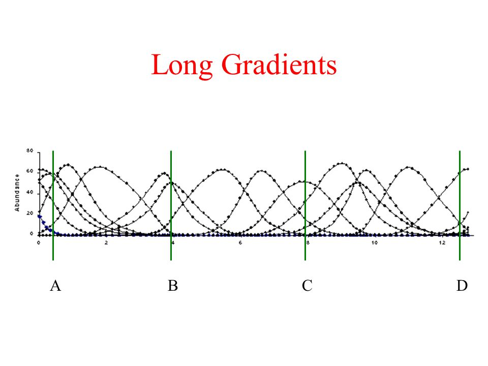 Long Gradients A B C D