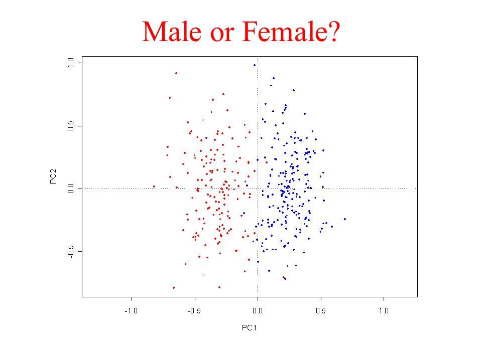 Male or Female