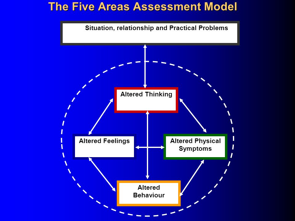 The Five Areas Assessment Model
