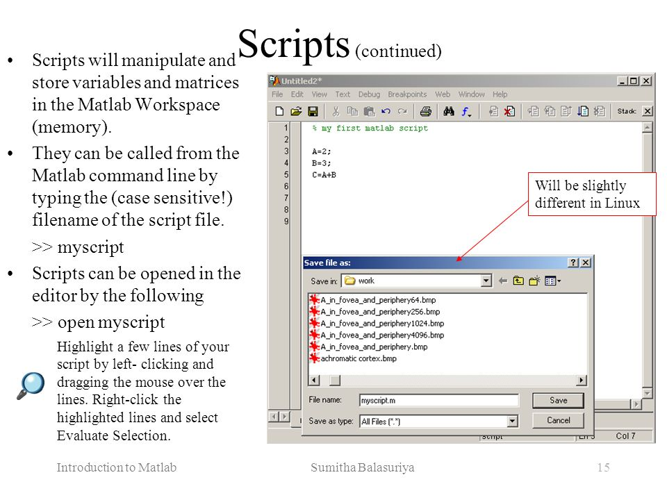Scripts (continued) Scripts will manipulate and store variables and matrices in the Matlab Workspace (memory).