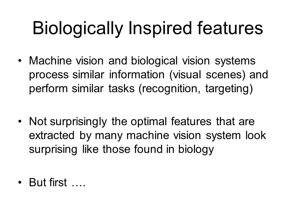 Biologically Inspired features