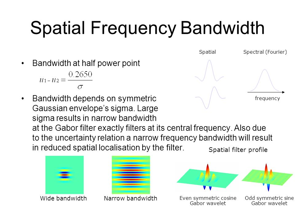 Spatial Frequency Bandwidth