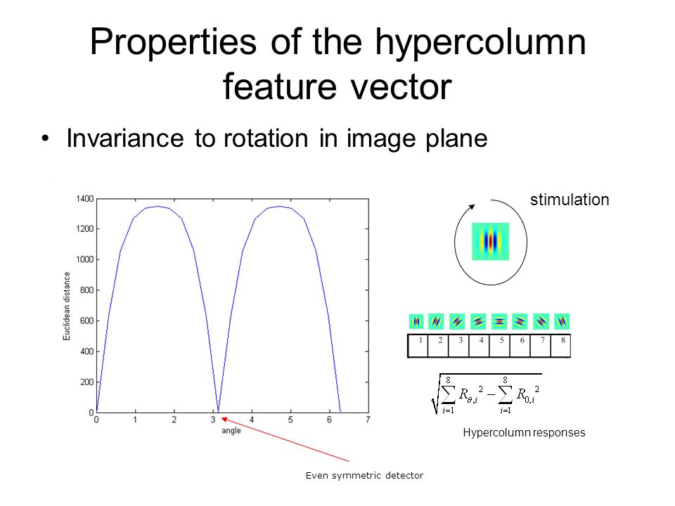 Properties of the hypercolumn feature vector