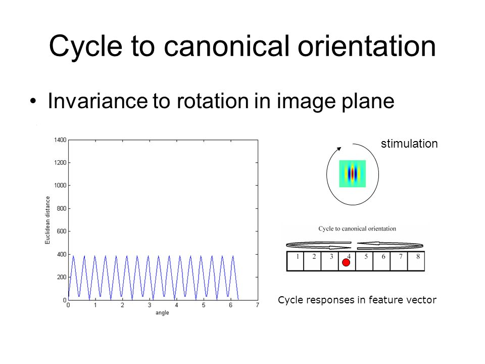 Cycle to canonical orientation