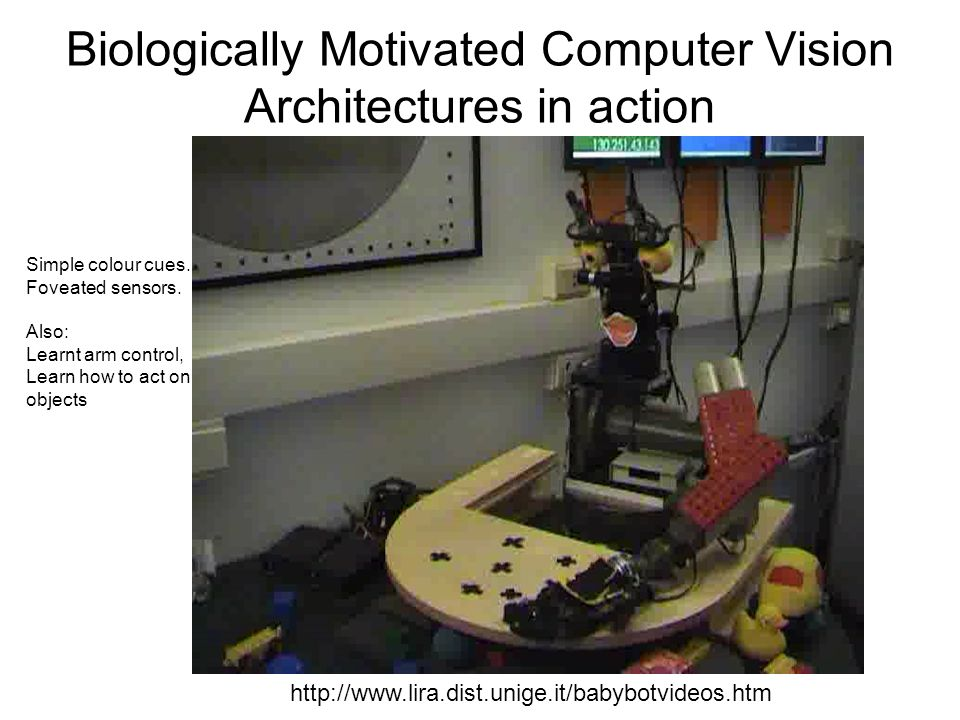Biologically Motivated Computer Vision Architectures in action