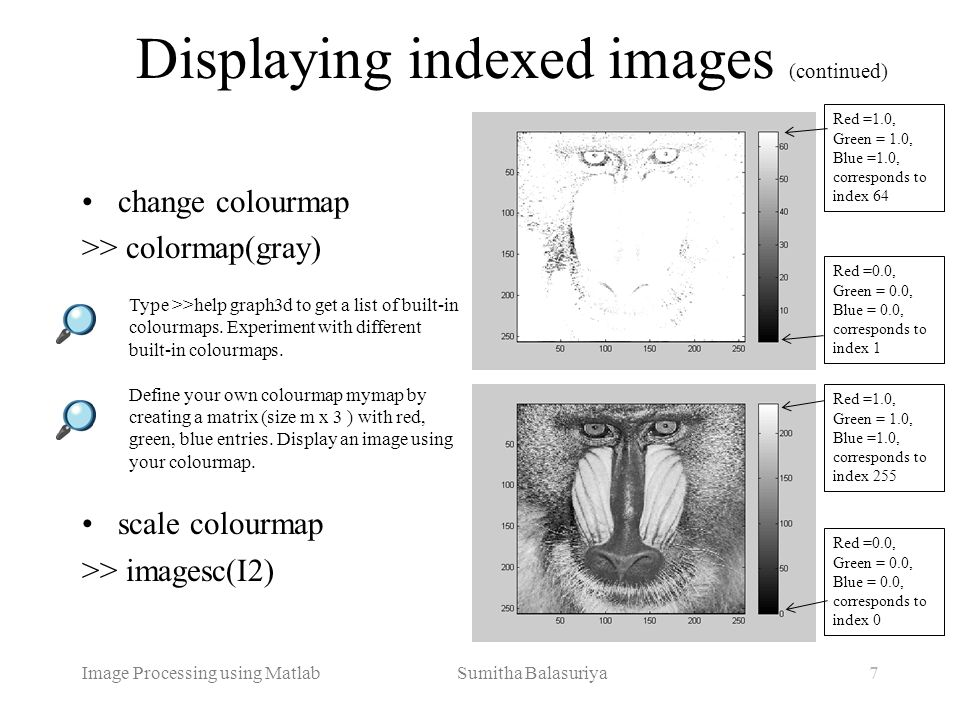 Displaying indexed images (continued)