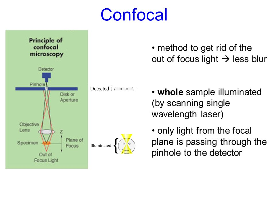 Confocal method to get rid of the out of focus light  less blur