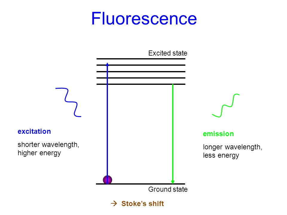 Fluorescence excitation emission shorter wavelength, higher energy