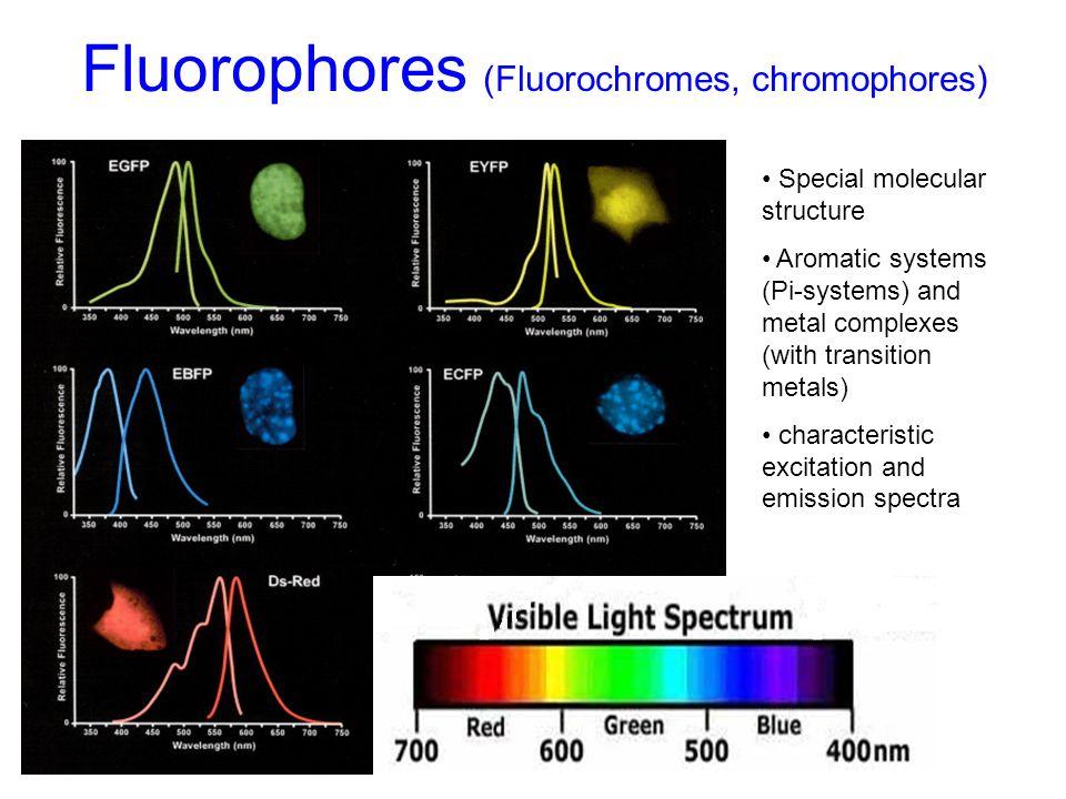 Fluorophores (Fluorochromes, chromophores)