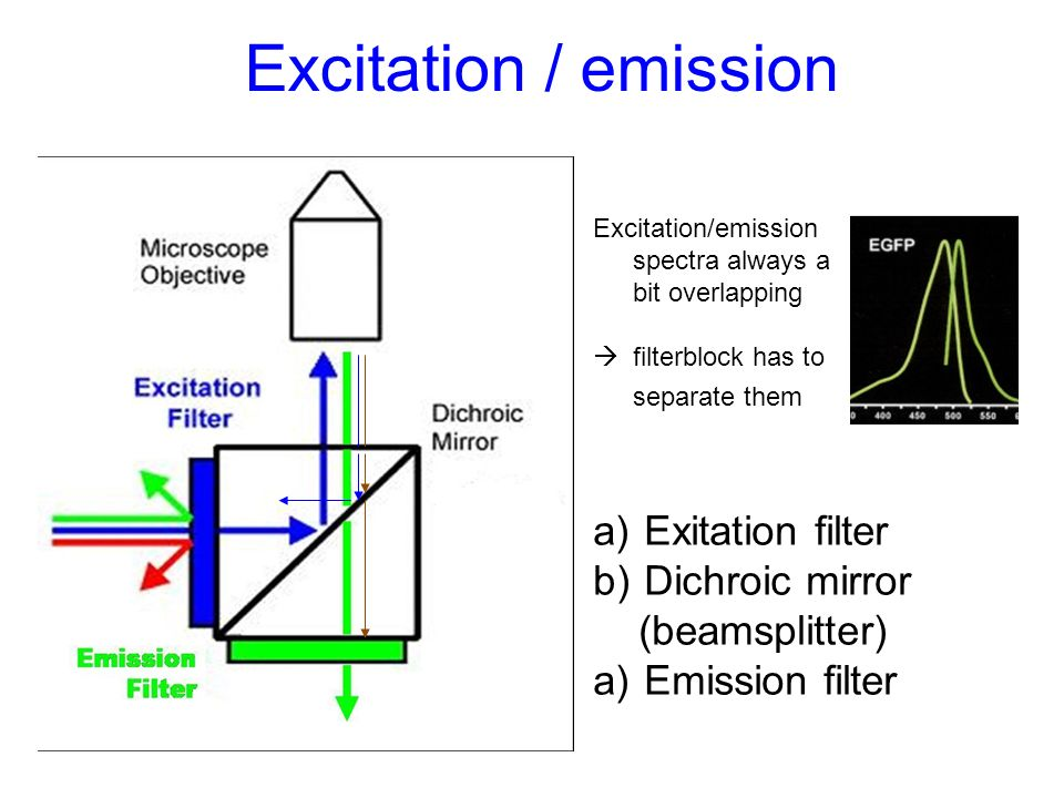 Excitation / emission Exitation filter Dichroic mirror (beamsplitter)