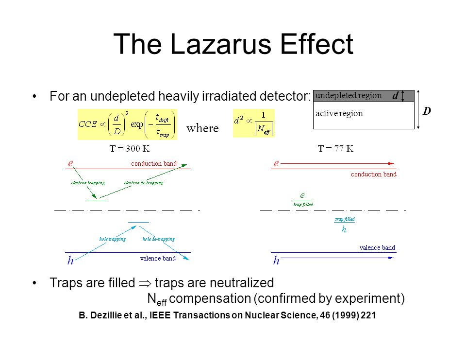 The Lazarus Effect For an undepleted heavily irradiated detector: