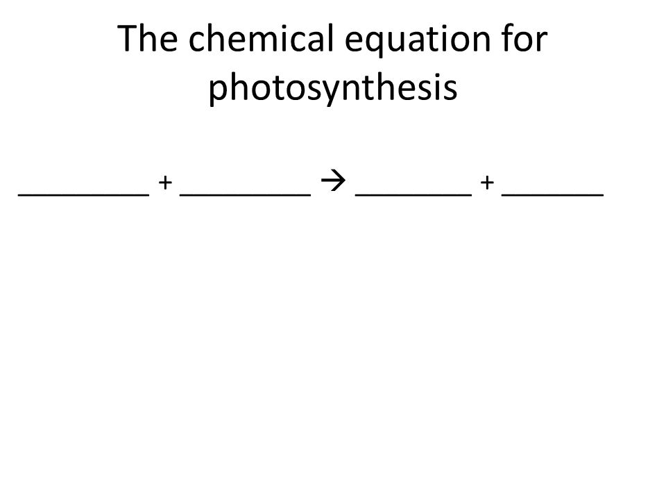 The chemical equation for photosynthesis