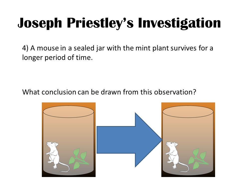 Joseph Priestley's Investigation
