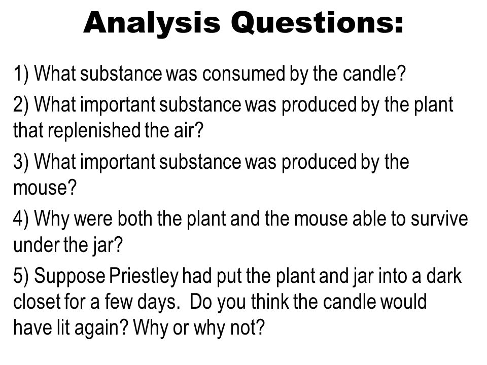 Analysis Questions: