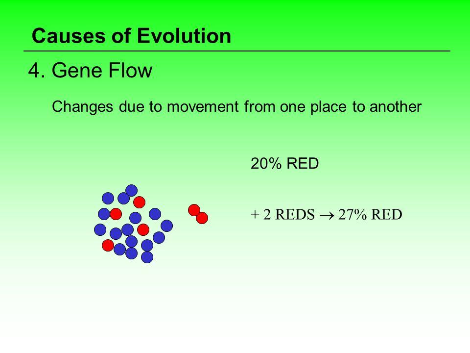 Causes of Evolution 4. Gene Flow