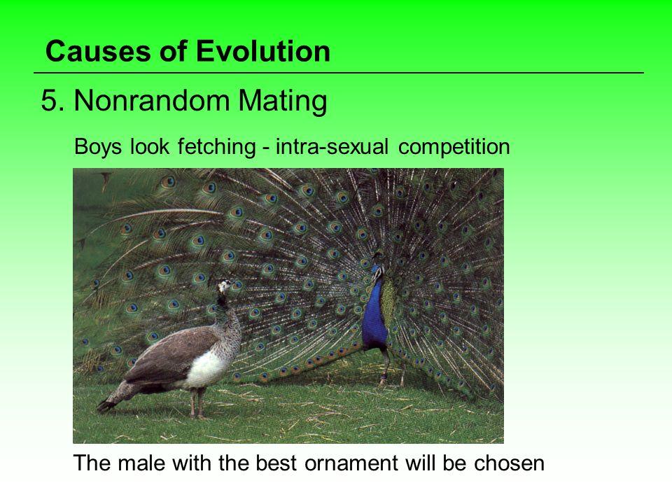Causes of Evolution 5. Nonrandom Mating