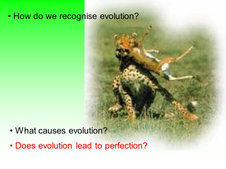 How do we recognise evolution