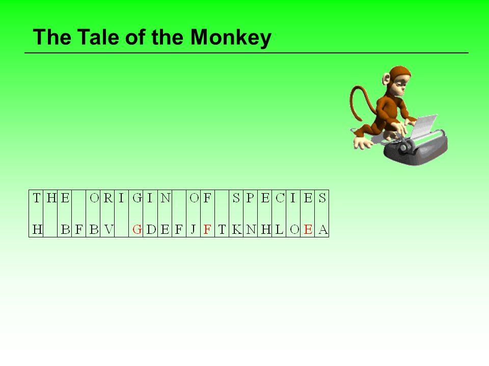 The Tale of the Monkey
