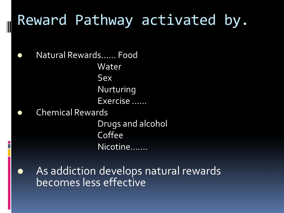 Reward Pathway activated by.