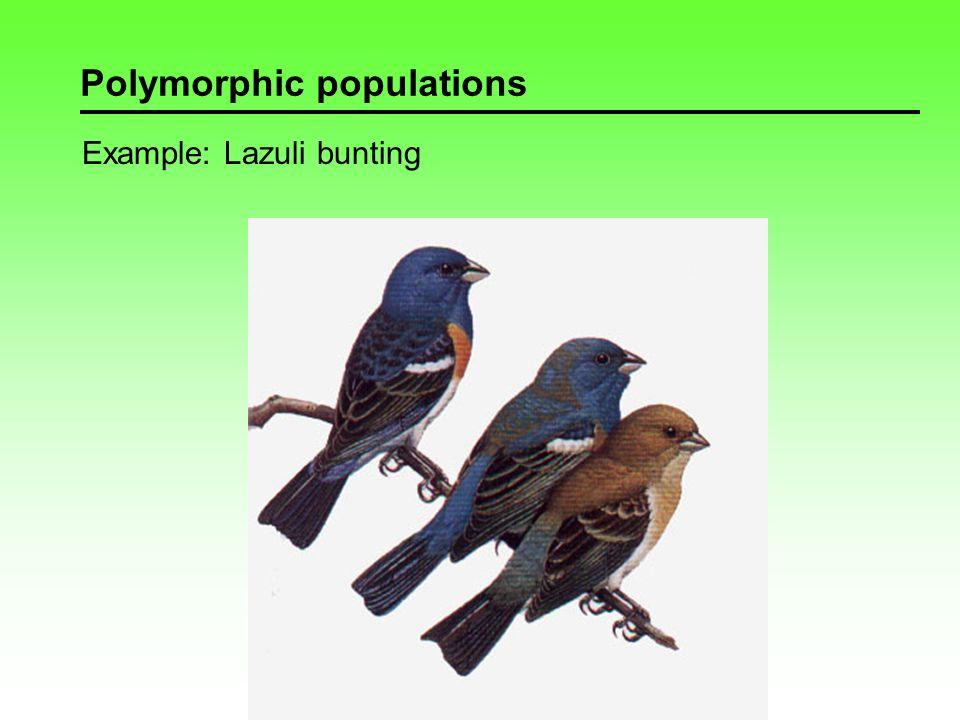 Polymorphic populations