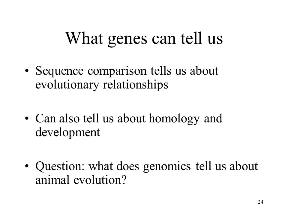 What genes can tell us Sequence comparison tells us about evolutionary relationships. Can also tell us about homology and development.