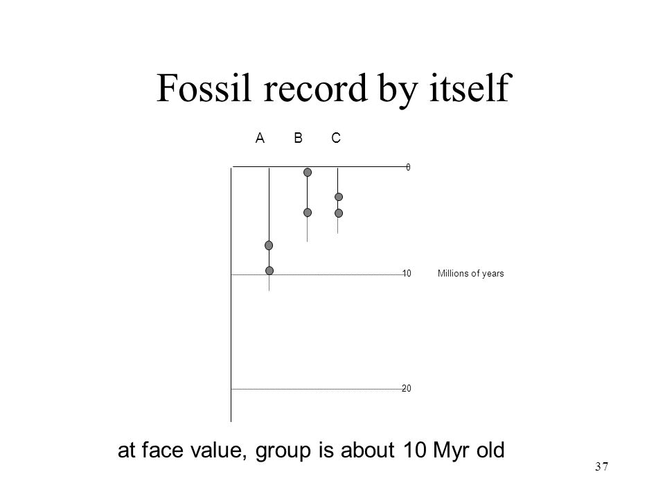 Fossil record by itself
