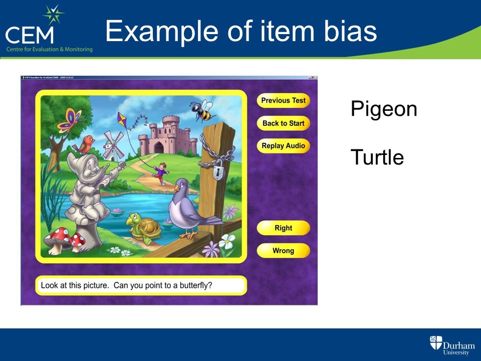 Example of item bias Pigeon Turtle