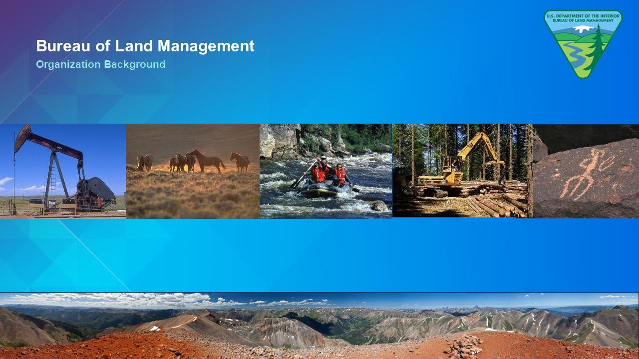 Patrick mahoney usdoi blm christie pleiss esri mark for Bureau land management