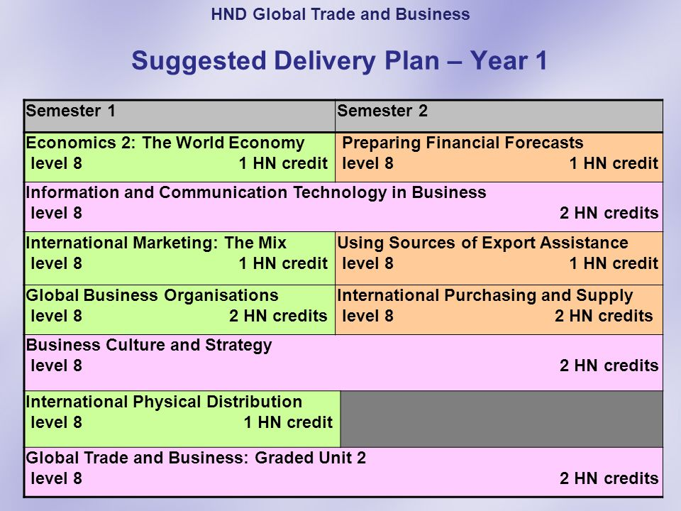 Suggested Delivery Plan – Year 1