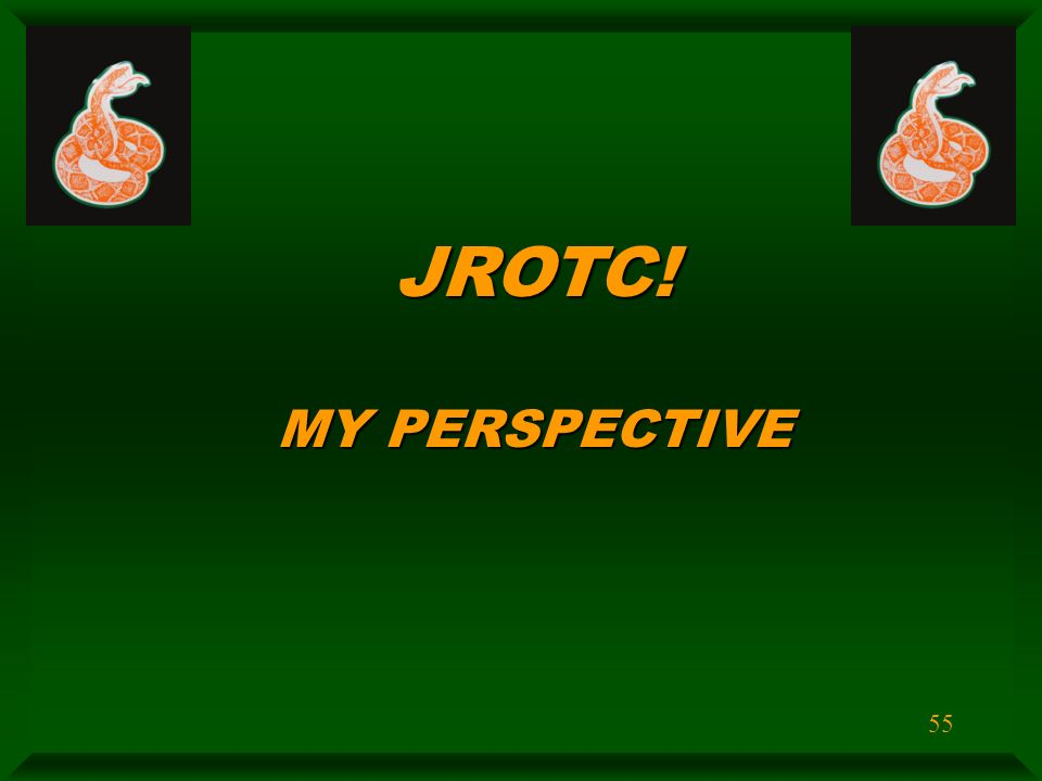 jrotc in perspective World geography building a global perspective custom edition for jrotc [a] on amazoncom free shipping on qualifying offers.