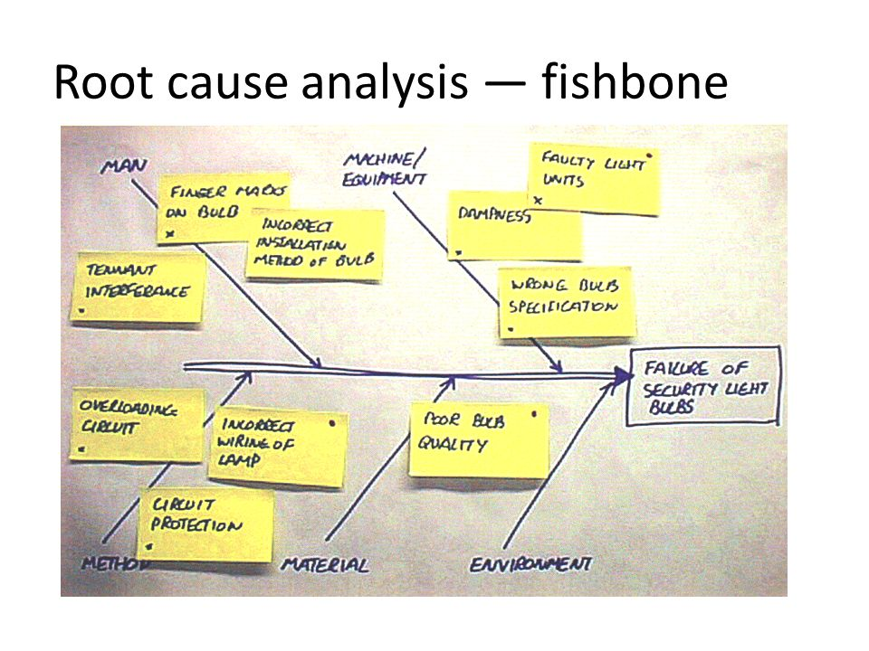 fishbone diagram for root cause analysis 28 images plan do study act cycle and qi tool Fish Anatomy Diagram Fishbone Diagram Template