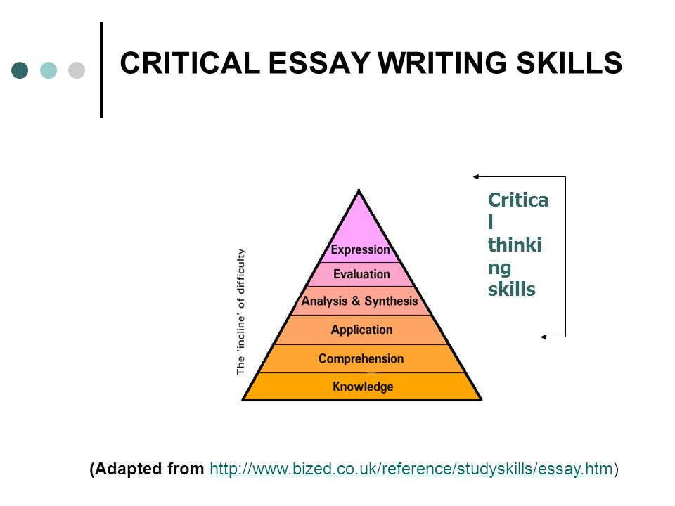 Spotlight on critical skills in essay writing