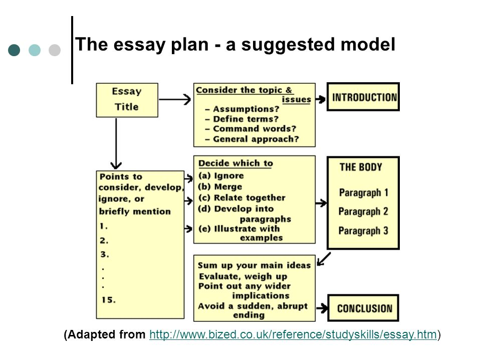 model essay plan