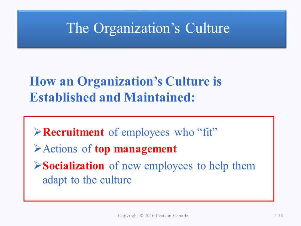 significance of organisation culture in an Understanding organizational culture and its company's undoubted success is seen as providing evidence to the importance of organizational culture.