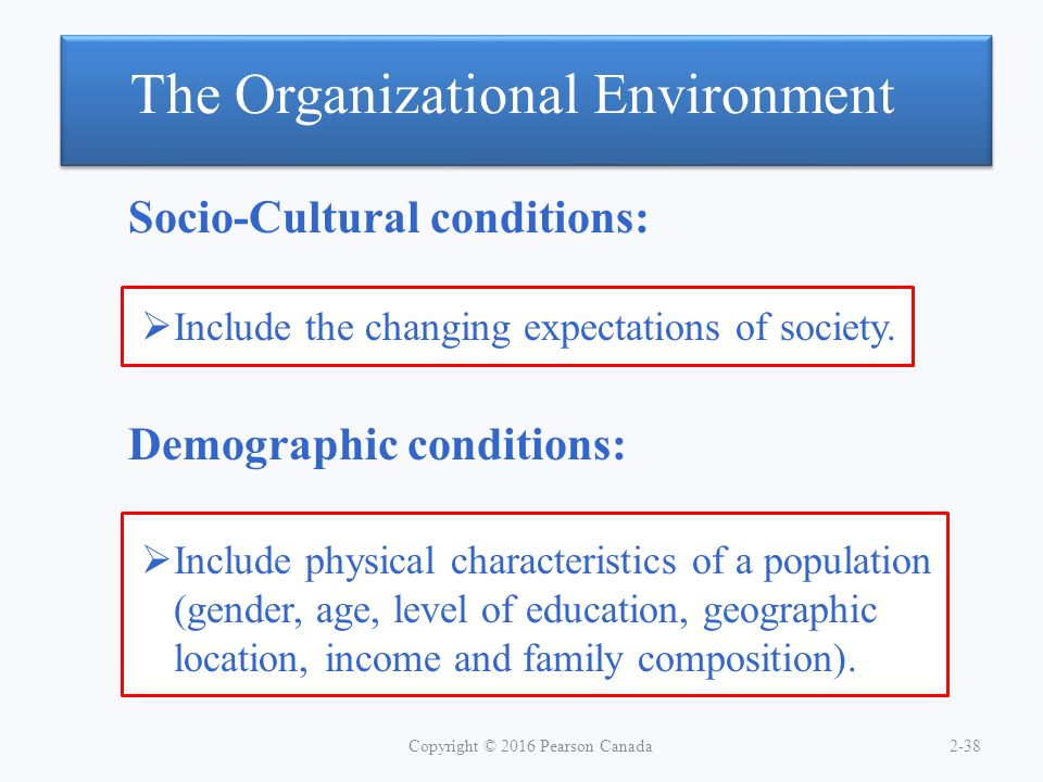 characteristics of demographic environment Top management team characteristics, strategy implementation, competitive environment network environment is relevant demographic characteristics such as.